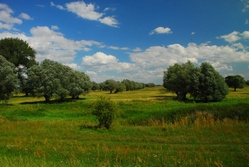 Havel landscape