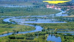 Peene river, Jarmen