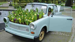 Keukenhof Car&Flowers