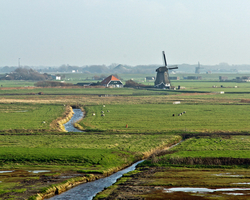 Northern Holland windmill landscape